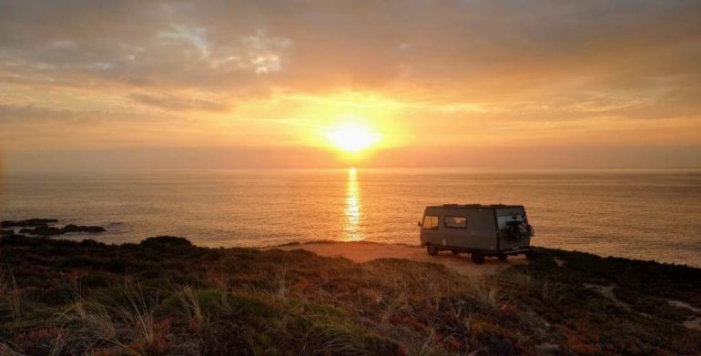 Sommerpause | Ruhe will Leben